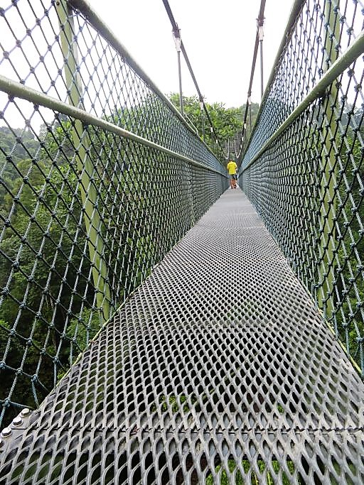 Canopy Walk Bridge 1