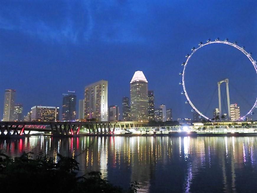 Singapore Skyline bei Nacht 1