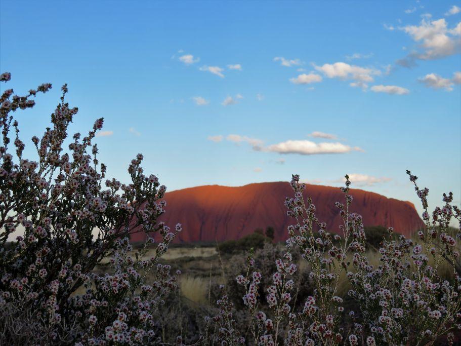 Uluru aus der Ferne 2