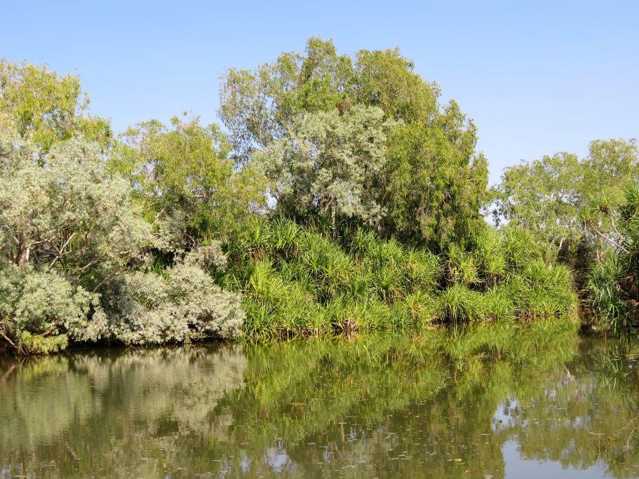 Wunderschöner Fluss 3