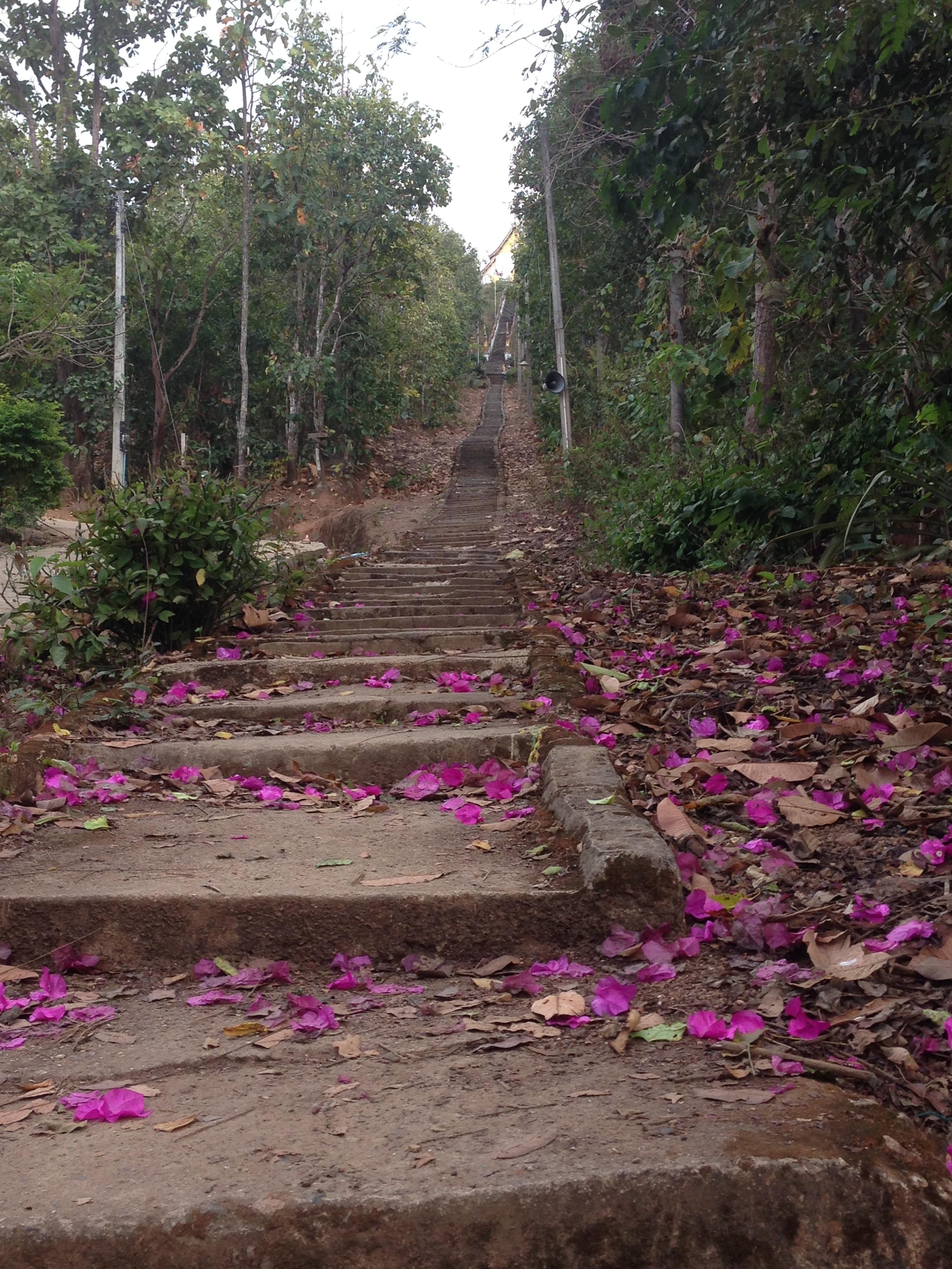 Tag 9: Pai – Reflexion und Meditation